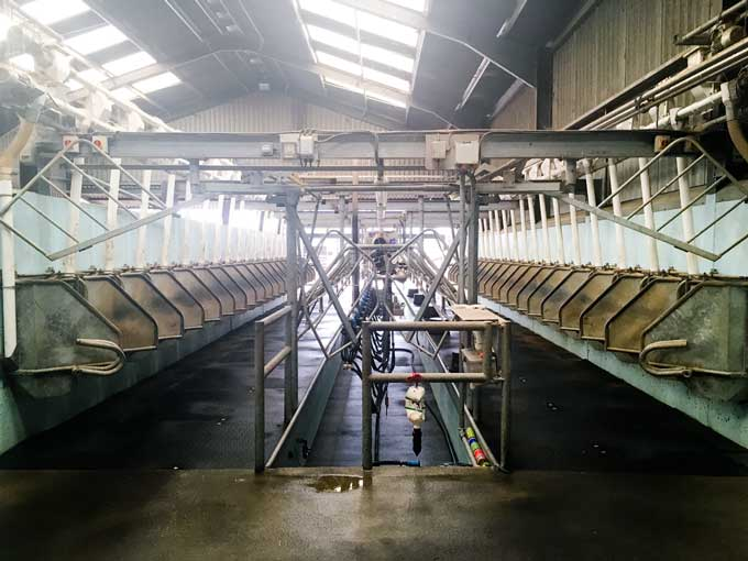 Arla Cockhaise Farm - Organic Free Range Milk